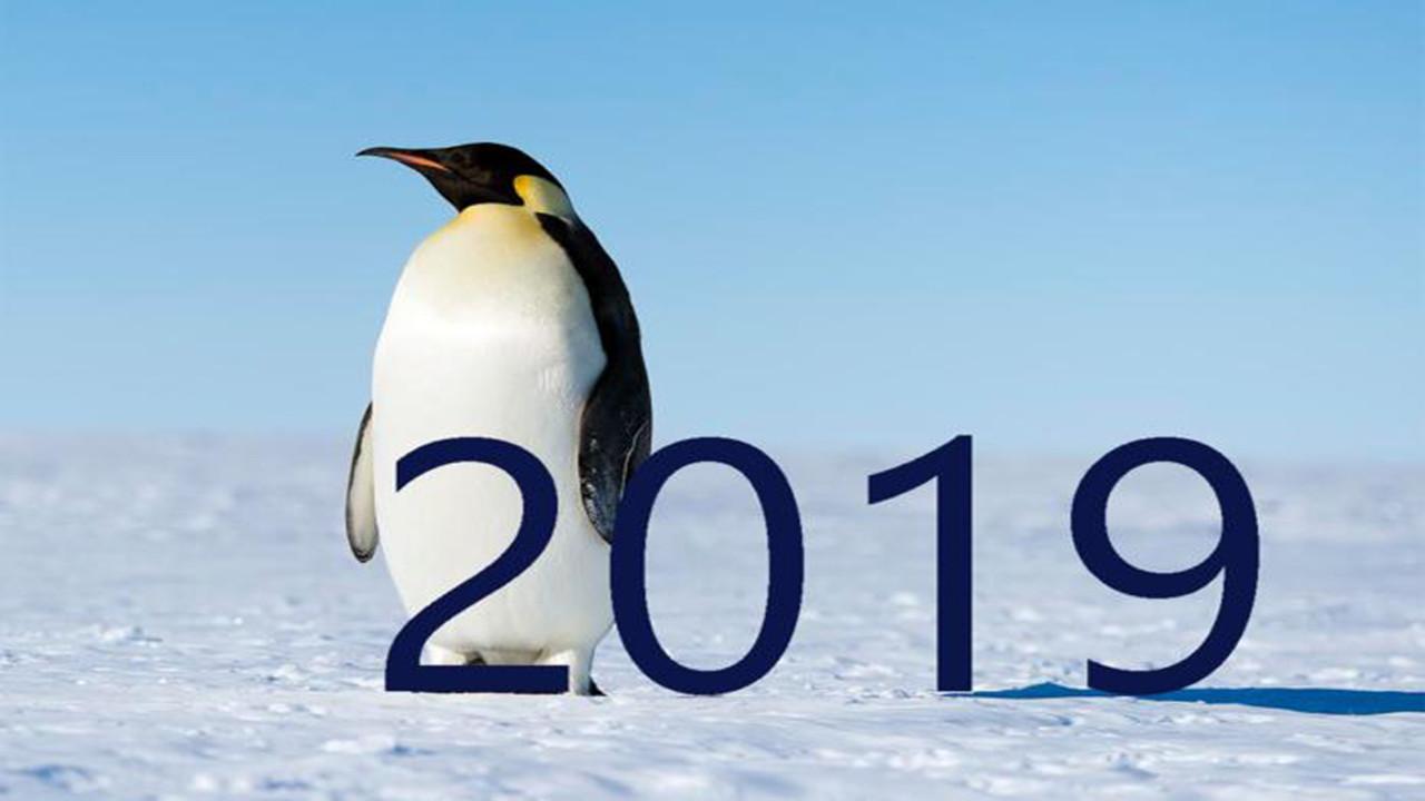 Photo of نظام التشغيل linux سيظهر في كل مكان في عام 2019