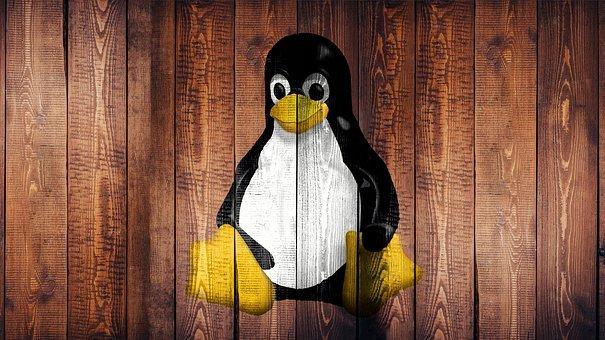 نظام التشغيل لينوكس